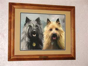 PET PORTRAITS OF TWO PET CAIRN TERRIERS BEST KNOWN FOR THEIR ANCESTORY WITH THE ISLE OF SKYE AND COUSIN TO THE WEST HIGHLAND WHITE TERRIER AND THE SCOTTIE